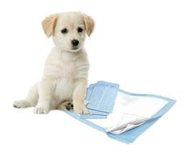 "300 23x36"" Pishie Lightweight Economy CHEAP Puppy Dog Training Pee Piddl... - $53.50"
