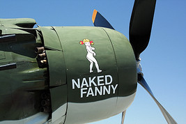 "1/144 scale Resin Kit Douglas A-1J Skyraider ""Naked Fanny"" US Air Force  - $16.00"