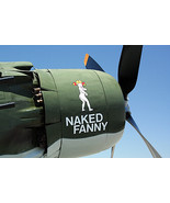 """1/144 scale Resin Kit Douglas A-1J Skyraider """"Naked Fanny"""" US Air Force  - $16.00"""