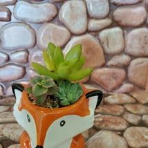 Mini Fox Planter with Succulent Arrangement, Succulent Gift, Animal Planter Pot image 6