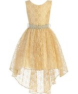 Big Girls' Sleeveless Floral Lace Rhinestone High Low Party Flower Girl ... - $48.50