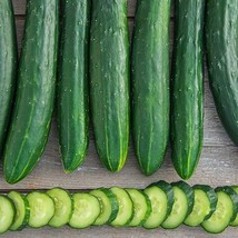 SHIP From US, 50 Seeds Sweet Success Hybrid Cucumber, DIY Healthy Vegeta... - $36.99