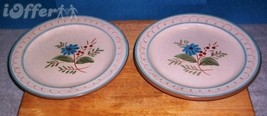 """STANGL BLUE DAISY PAIR (2) OF LUNCHEON PLATES  8 1/4"""" - $14.95"""
