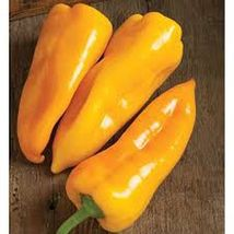 SHIP From US, 10 Seeds Escamillo Hybrid Sweet Pepper, DIY Healthy Vegeta... - $18.99