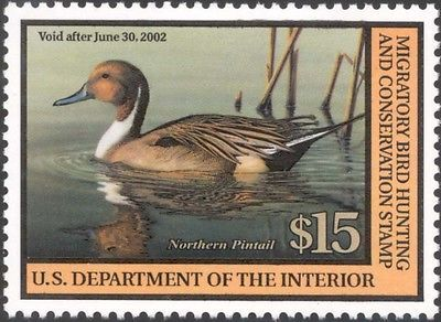 RW68, $15.00 Northern Pintail Federal Duck Stamp VF NH - Stuart Katz