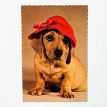 Dachshund Dog Vintage Hallmark Postcard - $5.94