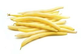 Bean Bush Cherokee Wax Non GMO Heirloom Garden Vegetable Seeds Sow No GMO® USA - $4.94+