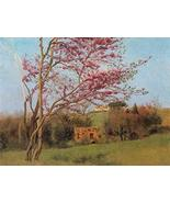 The Museum Outlet - Godward - Blossoming Red Almond - Poster Print Onlin... - $65.33