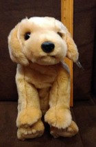 d66a64a9353 TY BEANIE Buddy Collection FETCH Golden Retriever Lab Dog w tag -  14.99