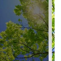 solardiamond Privacy Window Film One Way Tint for Glass | Blocks UV Rays... - $24.42