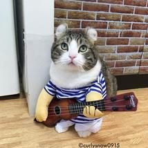Cat Costumes Guitar Player - Cat toy - $28.00+