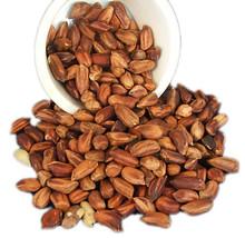 20 Jungle Peanut Seeds-1116 - $3.98