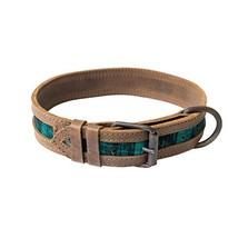 Hide & Drink Rustic Mayan Dog Collar, Tropical Lime - $37.65