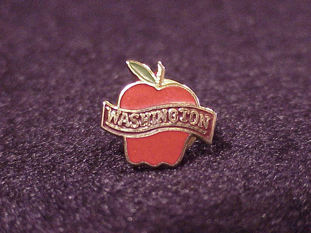 Washington State Apple Design Pinback Button, Pin - $5.95