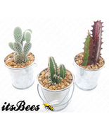 "3 Mini Cactus Buckets - Assorted in 2"" Metal Bucket - Wedding, Favor, Gift - $15.00"