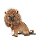 California Costumes King Of The Jungle Lion Dog Pet Halloween Costume PE... - $21.05+
