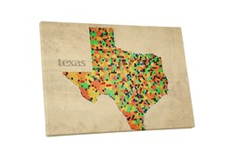 "Pingo World 0718QN9JL9Y ""Texas Mosaic Map"" Gallery Wrapped Canvas Wall Art, 20""  - $43.51"