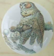 Cabinet Knobs Domestic bird Owl on branch - $4.46