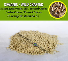 POWDER Hainan Resurrection Lily Asian Crocus Peacock Ginger Kaempferia Rotunda - $7.85+