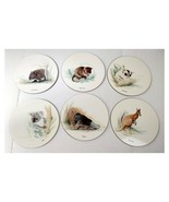 "Jason Placemats Lincoln Wakefield Australian Animals Round 9 3/8"" Set of 6 - $25.98"