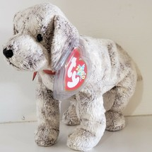 TY BEANIE BABIES 2000 – Tricks the Dog – MWMT – 7 inches - $9.90