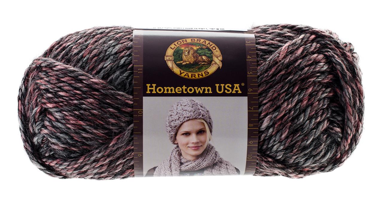 Lion Brand Yarns Hometown USA Classic Bulky Yarn, Salem Creek, 4 Oz - $6.49