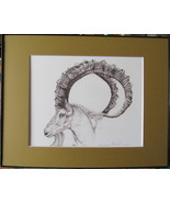 Ibex, Wild Goat, Framed Wildlife Art Print, Pen and Ink, Animal Drawing ... - $40.00