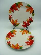 "Royal Norfolk Autumn Leaves & Acorns 10.5"" Porcelain Set of 2 Dinner Plates - $12.73"