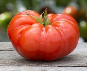 1/4 Oz Seeds of Beefsteak Tomato (Red-Indeterminate)