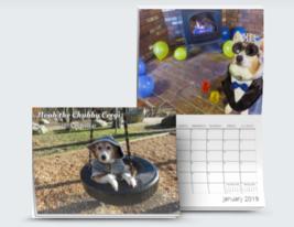 """Noah the Chubby Corgi 2019 Calendar (8.5"""" x 11"""") - $10.00"""