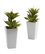 Double Mini Agave w/Planter (Set of 2) - $50.05