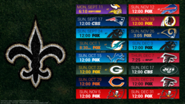 New Orleans Saints 2017 NFL Schedule turf Poster 24 X 36 inch  - $18.99