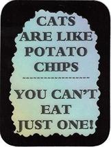 """Cats Are Like Potato Chips You Can't Eat Just One 3"""" x 4"""" Love Note Humorous Say - $2.69"""