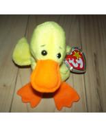 Ty Beanie Babies QUACKERS the Duck Beanbag Plush toy NWT - $6.29