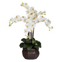 Phalaenopsis w/Decorative Vase Silk Flower Arrangement - $83.26