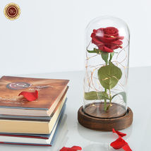 WR Beauty and The Beast Red Rose Glass Dome LED Light Wooden Base Lady Girl Gift image 7