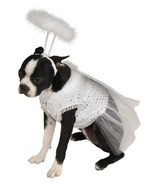 Rubies Costume Christmas Angel w/Halo Pet Dog Costume - Large - €13,17 EUR