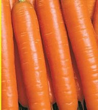 2g / 1200 Seeds of Carrots Nesravnennaya - $18.93