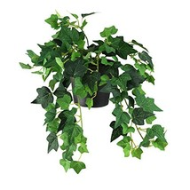"Northlight 8"" Decorative Forest Green Mini Spring Artificial Ivy Bush in... - €14,64 EUR"