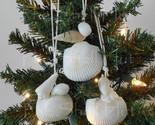 Seashell ornament 5b thumb155 crop