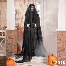 Mourning Glory Halloween Décor - $101.99