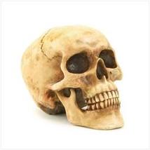 Grinning Skull Figurine (pack of 1 EA) - $359,60 MXN