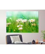 Daisy Field Canvas Print Flowers Wall Art Floral Home Decor Camomile Poster Gift - £35.50 GBP