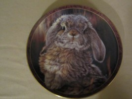 "BUNNY RABBIT collector plate VIVI CRANDALL ""I'm All Ears"" BUNNY TALES #2 - £19.28 GBP"