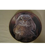 "BUNNY RABBIT collector plate VIVI CRANDALL ""I'm All Ears"" BUNNY TALES #2 - $24.99"