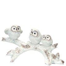 Three White Owls on Branch