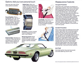 1974 Pontiac Firebird brochure 1 | 24 X 36 inch poster  - $18.99