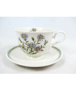 Portmeirion Susan Williams Ellis Botanic Garden Cup & Saucer Aster Novi ... - $19.79