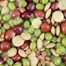1/4 lb ORGANIC BEAN SALAD SPROUTING MIX Seeds Mung Adzuki Green Lentils ... - $6.00