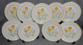 Set (9) Johnson Brothers SPRING DAY PATTERN Ironstone B&B/Dessert Plates - $29.69